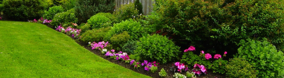Neighborhood Lawn Care - Call Today! (503) 730-8759 - Home
